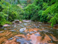 Amboro National Park riverbed