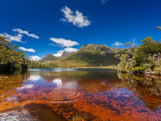20210208142328-Cradle Mountain Lake St. Clair.jpg
