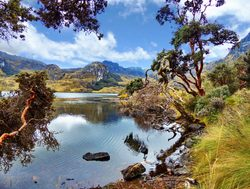 El Cajas National Park Lake Toreadora