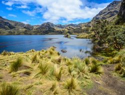Toreadora Lake in El Cajas National Park Ecuador