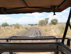 Mount Meru National Park safari