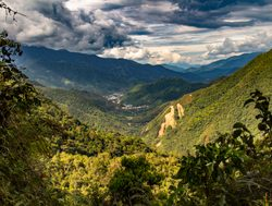 Podocarpus National Park valley landscape