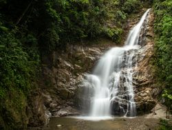 Podocarpus National Park waterfall