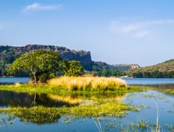 Ranthambore National Park island in lake