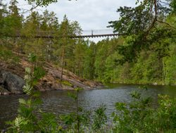 Repovesi National Park rope bridge