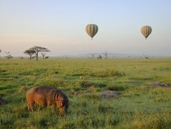 Serengeti National Park ballooning