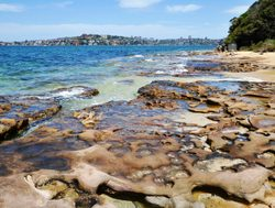 Sydney Harbor National Park rocky beach