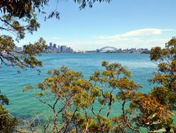 Sydney Harbor National Park with sydney bridge