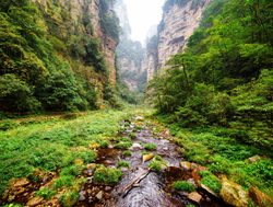 Wulingyuan scenic area valley